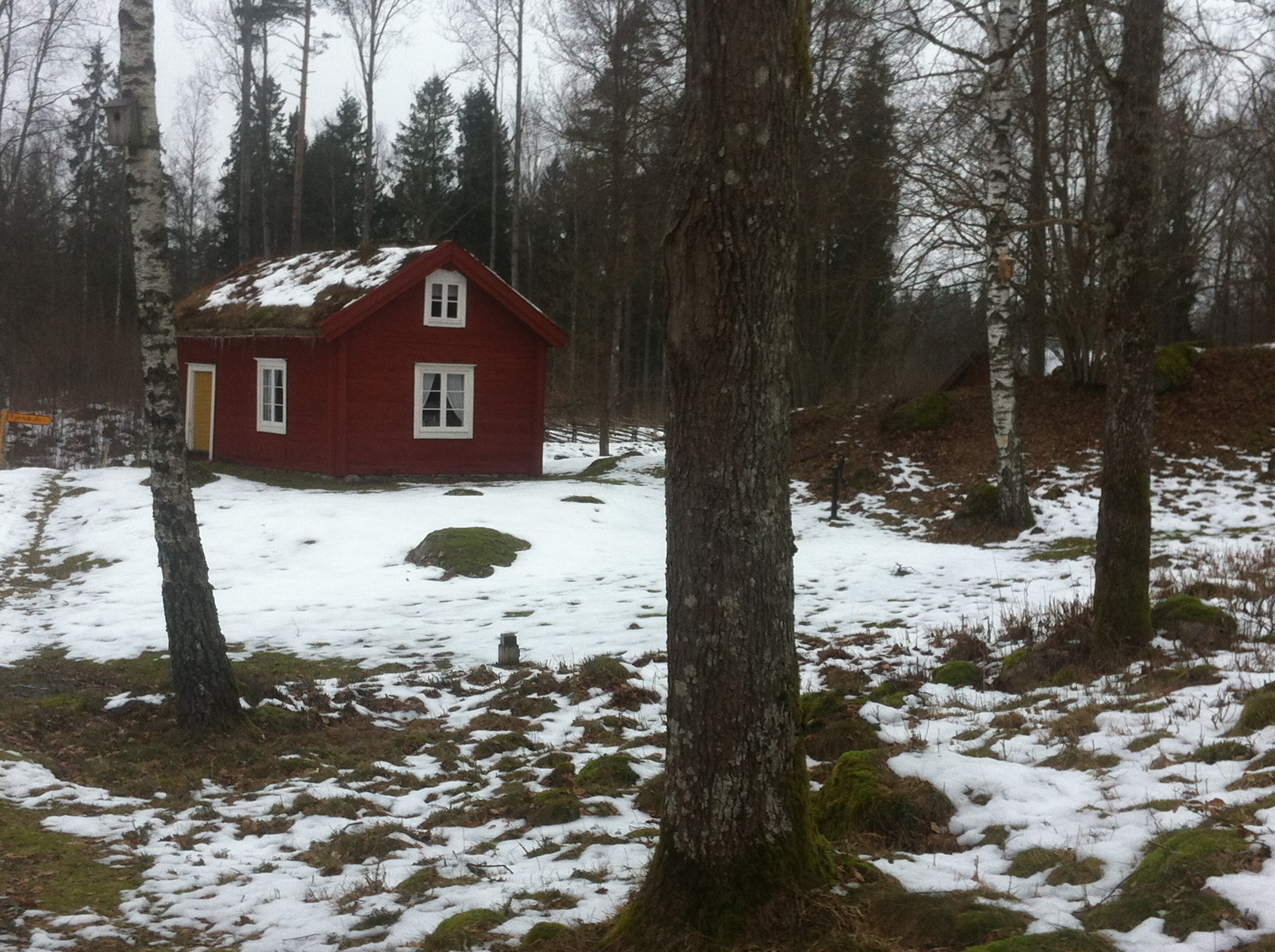 Sweden, Småland in february. Scandinavian Knit - storytelling
