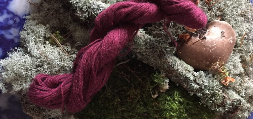 Ullcentrum yarn on moss. Scandinavian knit